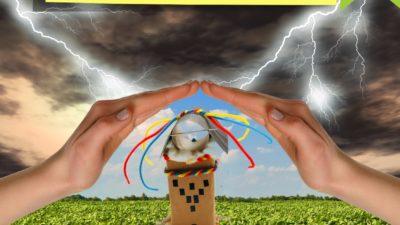 Wild Weather Shelter STEM Challenge